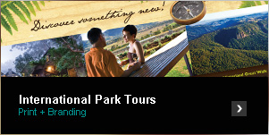 International Park Tours - Print and Branding