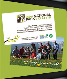 International Park Tours Branding + Brochures